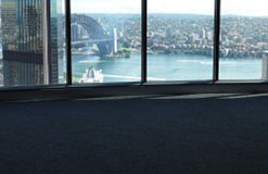 Projects Commercial Carpet Projects Custom Carpet Projects